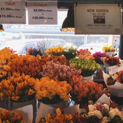 The flowers here were beautiful. They were so vibrant and healthy, not to mention that they were very cheap.